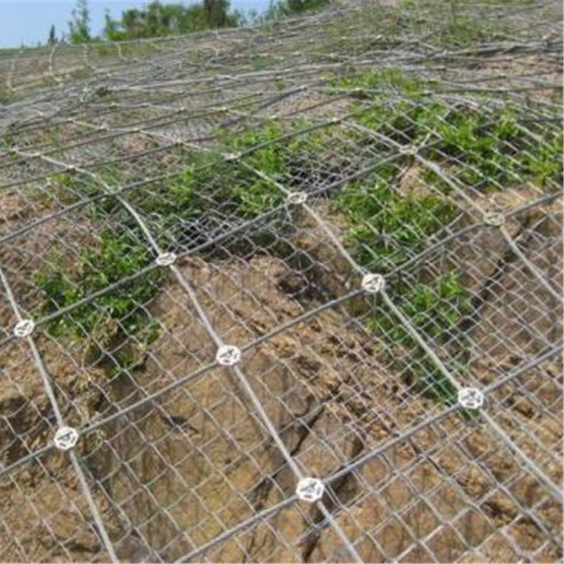 Stainless steel wire rope mesh net for slope protection